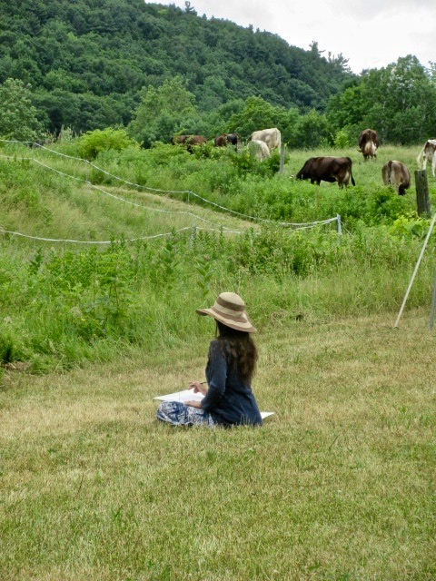 woman in summer pasture sketching with cows in background