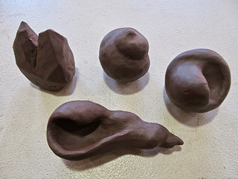 carved snail shells