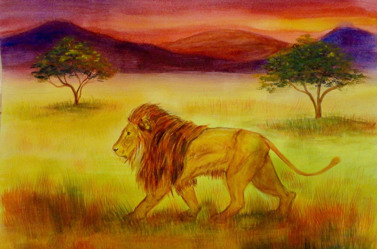 Waldorf teacher ed student work African lion watercolor layer painting