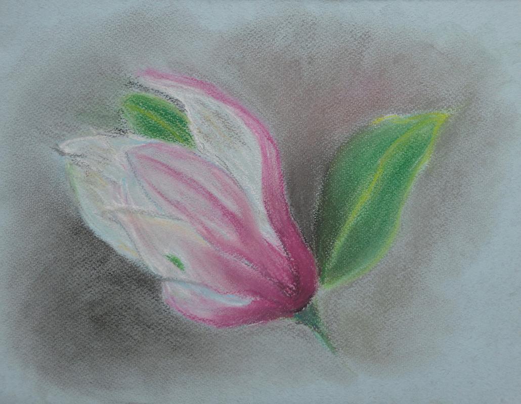 visual art student work lotus blossom